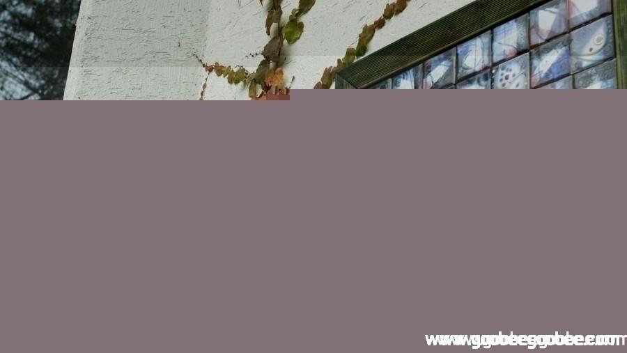 1f2c81bfb3c50a5043af6daec859411c_1508044684_608.jpg